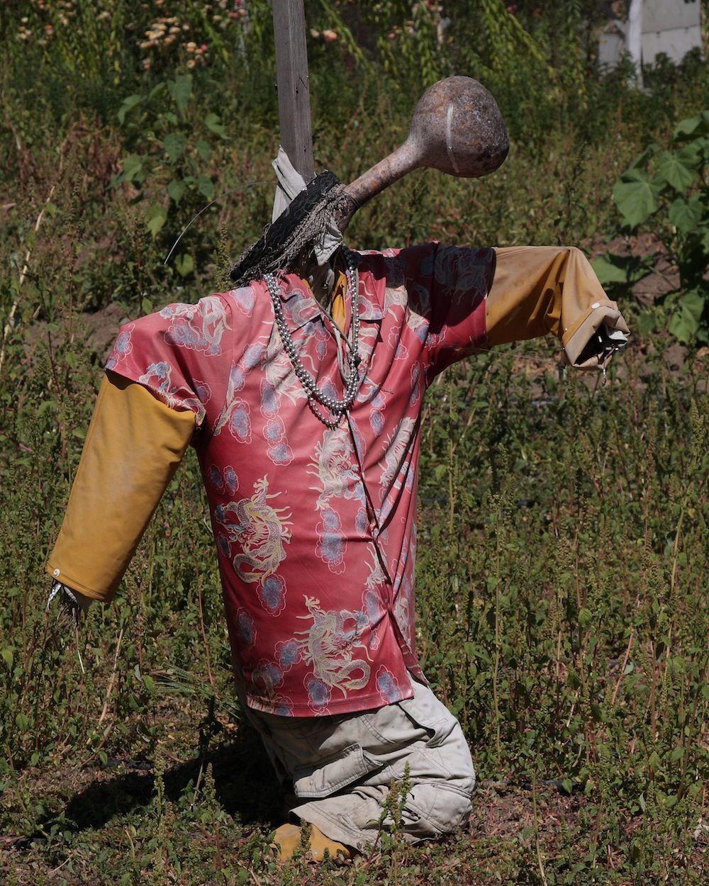 chalk-hill-scarecrow